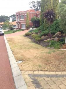 Turf Installation Lawn Installation